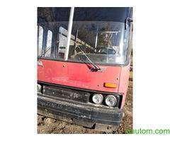 Автобус пассажирский Икарус 256 - Фото 2