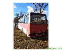 Автобус пассажирский Икарус 256 - Фото 3